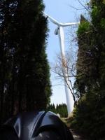 風車2.jpg