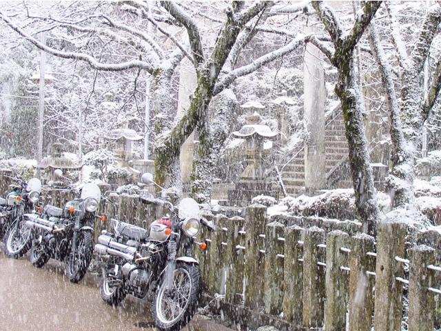 加茂神社前.jpg