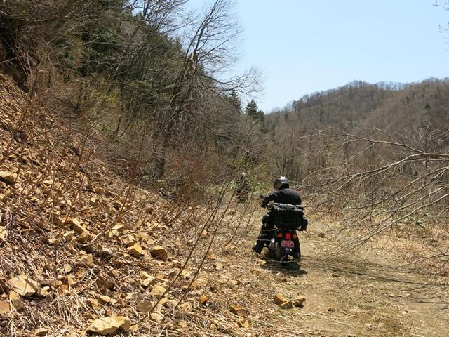 林道1.jpg