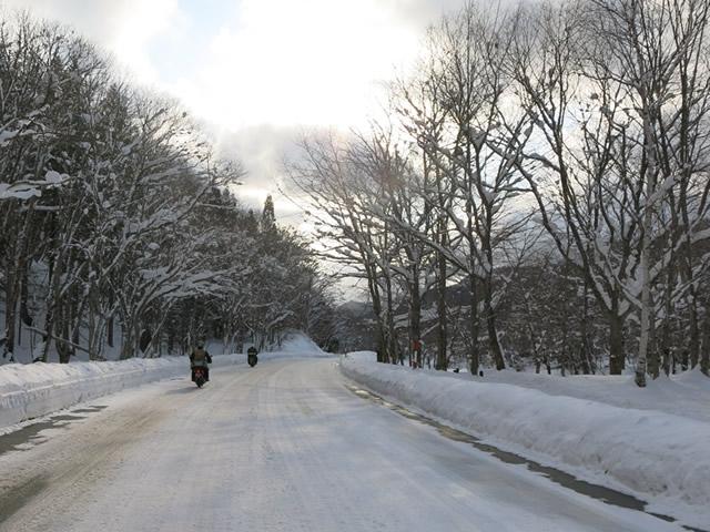 圧雪路面.jpg