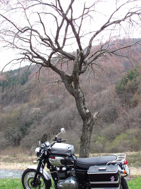木祖村にて.jpg