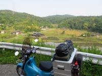 柳井市田園風景.jpg